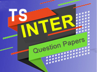 TS Inter 2nd year Arabic 2016 Exam Paper